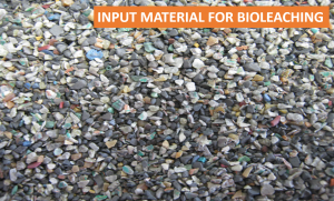 Input material for bioleaching
